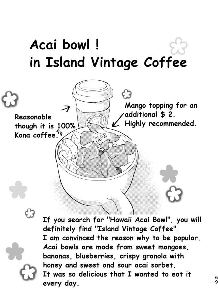 Acai bowl in Island Vintage Coffee.
